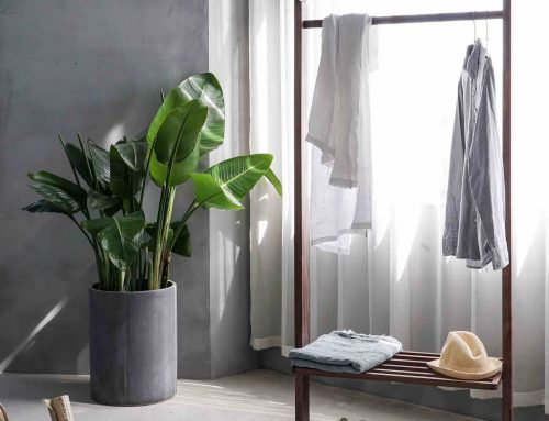 Boligtipsene som oppgraderer boligen din – nå